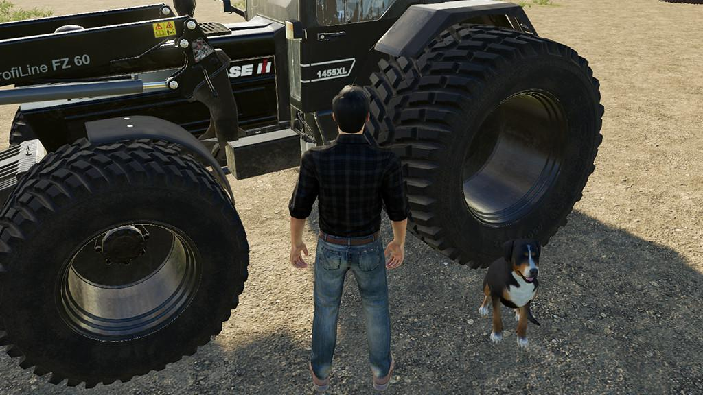Contest - 3rd Person v1 0 0 0 for FS 19 - Farming Simulator
